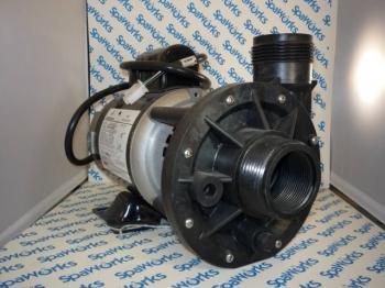 AquaFlo Circulation Pump (1994-2001)